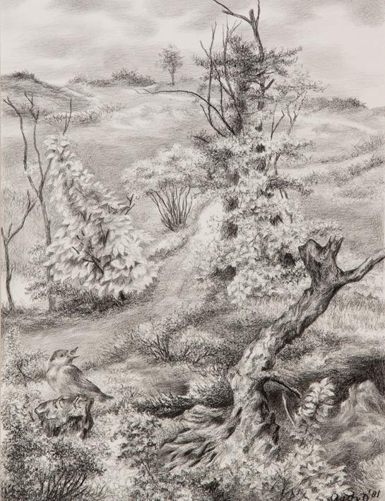1059  aart van dobbenburgh | landschap tekening 1981 1
