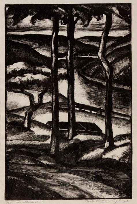 1151 Aart van Dobbenburgh | De ardennen 1926 3