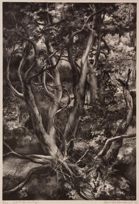 1155 Aart van Dobbenburgh | 22e landschap 1957 0